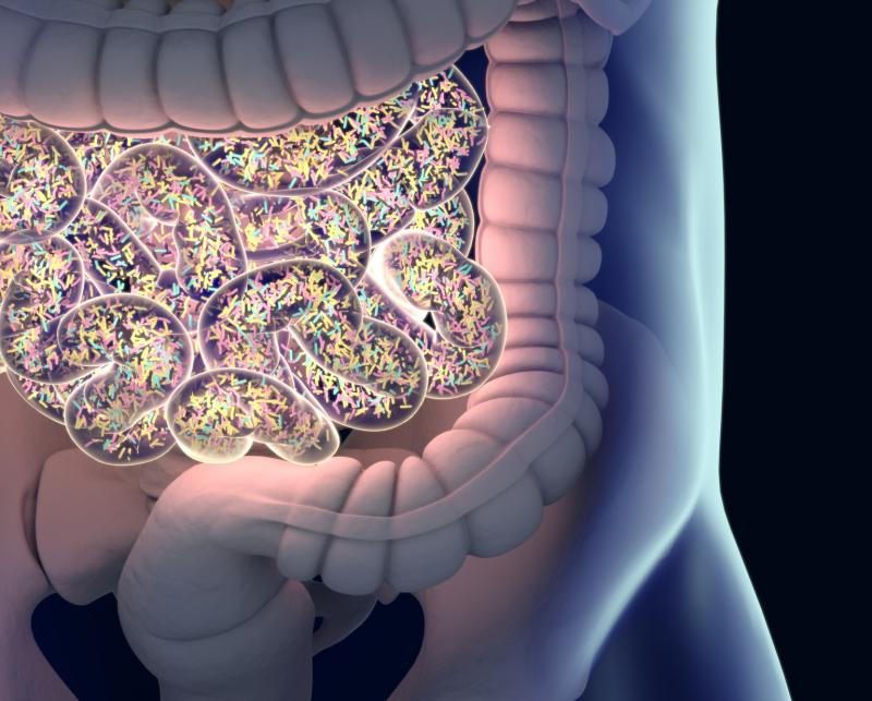 R Clinic - Sex, hormones, obesity affect diversity, composition of gut microbiota